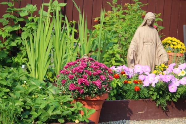 Mary_garden